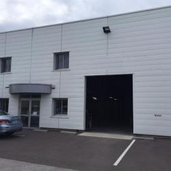 Location Local d'activités Dijon 225 m²
