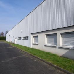 Location Local d'activités Saint-Martin-le-Beau 547 m²