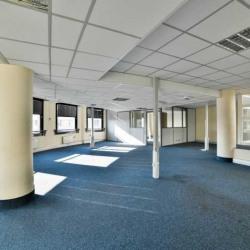 Location Bureau Sceaux 536 m²