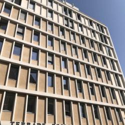Location Bureau Lyon 6ème 380 m²