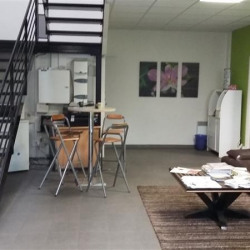 Location Local d'activités Chessy 443 m²