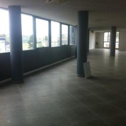 Location Bureau Villeneuve-le-Roi 300 m²