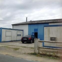 Location Local d'activités Ambarès-et-Lagrave 800 m²