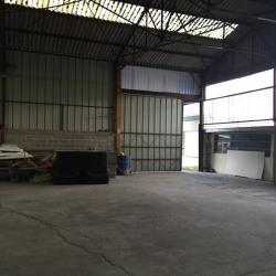 Location Local d'activités Lillebonne 385 m²
