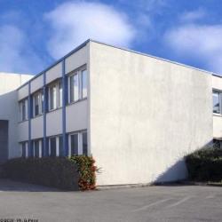 Vente Local d'activités Aulnay-sous-Bois (93600)