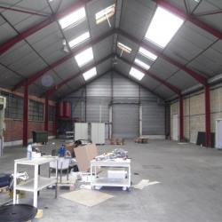 Location Local d'activités Saint-Maur-des-Fossés 1900 m²