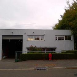 Vente Entrepôt Voisins-le-Bretonneux 512 m²