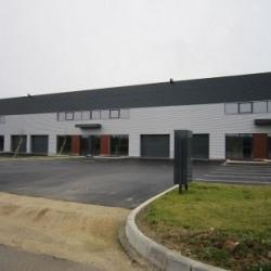 Location Local d'activités Élancourt 503 m²