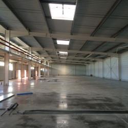 Location Local d'activités Toulouse 3240 m²