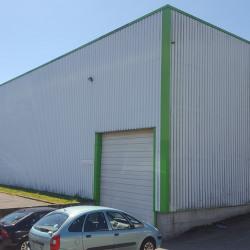 Location Local d'activités Melesse 1350 m²