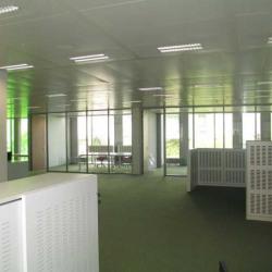 Location Bureau Euralille 875 m²
