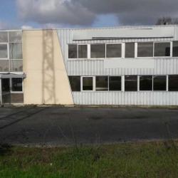 Vente Bureau Pessac 1000 m²