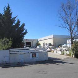 Location Local d'activités Saint-Georges-d'Orques 525 m²