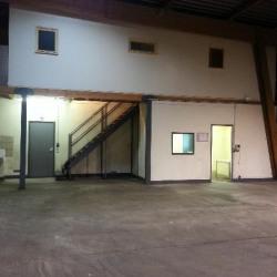 Vente Local d'activités Domont 560 m²