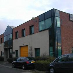 Vente Bureau Noisy-le-Roi 250 m²