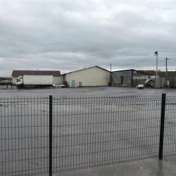 Location Terrain Dammartin-en-Goële 9000 m²