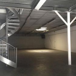 Location Local d'activités Malaunay 320 m²