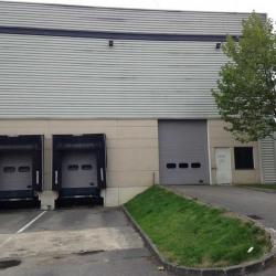 Vente Local d'activités Élancourt 4155 m²