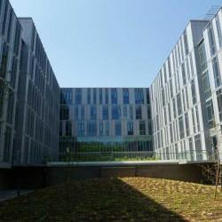 Location Bureau Lyon 9ème 827 m²