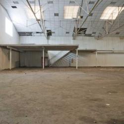 Location Local d'activités Épinay-sur-Seine 1100 m²