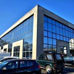 Location Bureau Palaiseau 296 m²