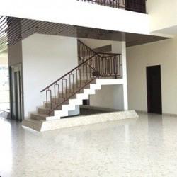 Location Bureau Les Essarts-le-Roi 220 m²