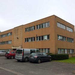 Location Bureau Lezennes 280 m²
