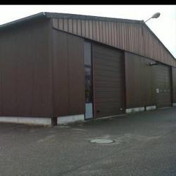 Location Local d'activités Strasbourg 1250 m²