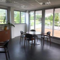 Vente Local d'activités Voreppe 1760 m²