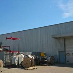 Location Local d'activités Miribel 2187 m²