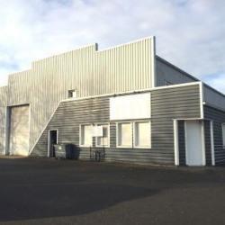 Location Local d'activités Bréal-sous-Montfort 470 m²