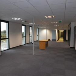Location Bureau Guipavas 896 m²