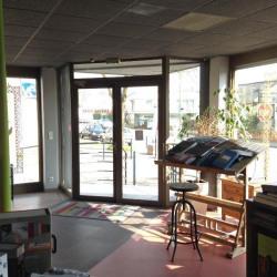 Location Local d'activités Rennes 560 m²