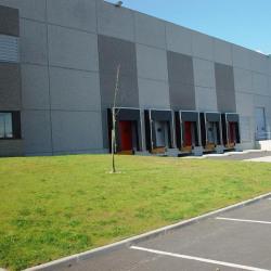 Location Entrepôt Marly-la-Ville 29858 m²