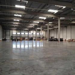 Location Entrepôt Cestas 5987 m²