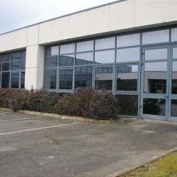 Location Local d'activités Saclay 1955 m²