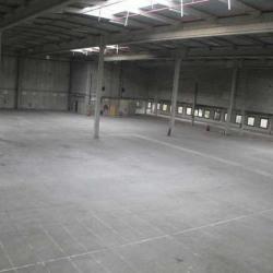 Vente Entrepôt Croissy-Beaubourg 11525 m²