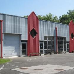 Location Local commercial Annemasse 300 m²
