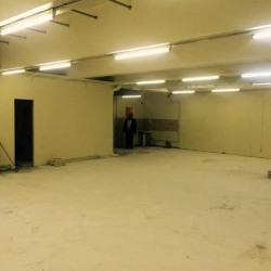Location Local d'activités Aubervilliers 170 m²