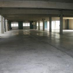 Location Local d'activités Saint-Chamond 400 m²