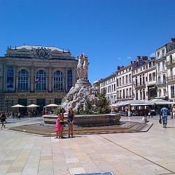 Cession de bail Local commercial Montpellier 50 m²