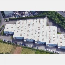 Location Local d'activités Saint-Genis-Laval 860 m²