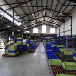 Location Local d'activités Saint-Denis 1303 m²