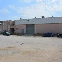Location Entrepôt Le Rove 300 m²
