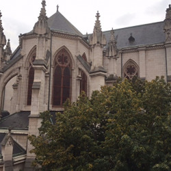Location Local commercial Lyon 6ème 528 m²