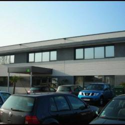 Location Bureau Baillargues 80 m²