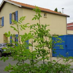 Maison Chatelaillon Plage 6 pièce (s) 150 m²