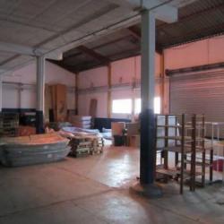 Location Local d'activités Saint-Laurent-du-Var 425 m²