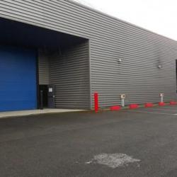 Location Entrepôt Alfortville 1659 m²