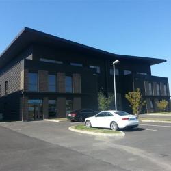 Vente Local d'activités Ferrières-en-Brie 1550 m²
